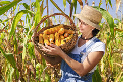 Happy farmer Royalty Free Stock Photo
