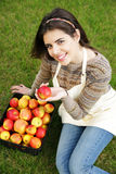 Woman with basket apples against green grass Royalty Free Stock Photos