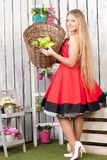 Woman with a basket of apples Royalty Free Stock Images