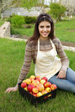 Woman with basket apples in garden Stock Photo