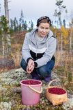 Woman with a basket and a bucket full of ripe cranberries Royalty Free Stock Photography