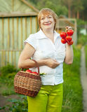 Woman with basket of harvested vegetables Stock Photography