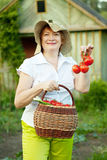 Woman with basket of harvested vegetables Royalty Free Stock Photo