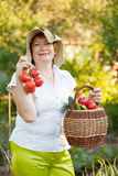 Woman with basket of harvested vegetables Royalty Free Stock Images