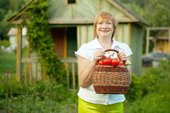 Woman with basket of harvested vegetables Stock Photos
