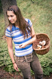 Woman with basket of mushrooms Stock Photography