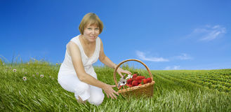 Woman with basket of strawberries on the field Royalty Free Stock Image