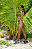 Woman in a bathing suit hiding in leaves Stock Photo