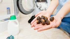 Woman using soap nuts to washing laundry stock photography