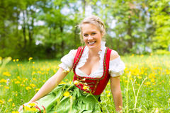 Woman in Bavarian clothes or dirndl on a meadow Royalty Free Stock Photo