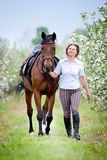 Woman and bay horse in apple garden. Horse and beautiful lady walking outdoor. Royalty Free Stock Image
