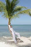 Woman on beach. A woman on the beach leaning against a palm tree Royalty Free Stock Photography