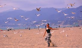 Woman on the beach enjoying and flying with sea birds Stock Photos
