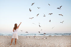 Woman at Beach are Feeding Seagulls Royalty Free Stock Photo