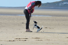 Woman on beach with her miniature Jack Russell Dog Royalty Free Stock Photography