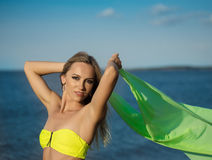 Woman at the beach holding sarong up in the air Stock Image