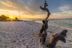 Woman on the beach at sunset. Woman resting on skeletal tree and watching a romantic colorful sunset on the beach of Tanjun Karang, Central Sulawesi, Indonesia Royalty Free Stock Images