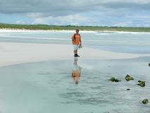 A woman on the beach royalty free stock photos