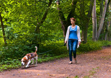 Woman with beagle walking in the park Royalty Free Stock Photography
