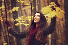 Woman in beautiful autumn park, concept autumn Royalty Free Stock Image