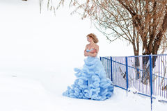 Woman in a beautiful blue dress in a winter Stock Images