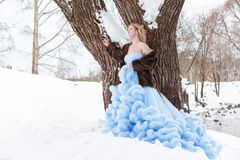 Woman in a beautiful blue dress in a winter Royalty Free Stock Photography