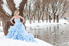 Woman in a beautiful blue dress in a winter Royalty Free Stock Photos