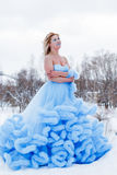 Woman in a beautiful blue dress in a winter Stock Photos