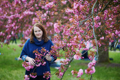 Woman with beautiful cherry blossom Stock Photography