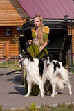 The woman in a beautiful dress with borzoi Royalty Free Stock Photo