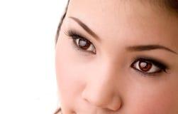 Woman beautiful eyes. Woman beautiful brown eyes looks ahead Stock Photo