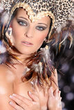 Woman with beautiful feather headdress Stock Image