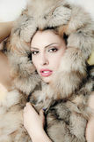Woman beautiful fur stock photography