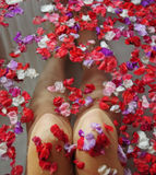 Woman beautiful knees in water with flowers Stock Images