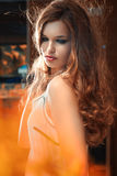 Woman with beautiful long brown hairs. Art portrai Stock Images