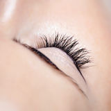Woman beautiful long eyelashes in cosmetics salon, macro photography of pretty female eyelashes Royalty Free Stock Photos
