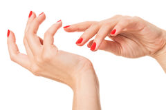 Woman with beautiful manicured red fingernails Stock Image
