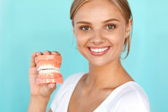 Woman With Beautiful Smile, Healthy Teeth Holding Dental Model Royalty Free Stock Photos