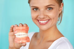 Woman With Beautiful Smile, Healthy Teeth Holding Dental Model Royalty Free Stock Image