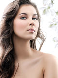 Woman beauty Stock Photos