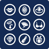 Woman and Beauty icons (set 8, part 2) royalty free illustration