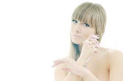 Woman beauty isolated on white royalty free stock photography
