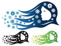 Woman Beauty Logo. A logo icon of a woman with flowers flowing from her hair Stock Images
