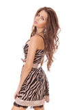 Woman with beauty long brown hair Stock Photography