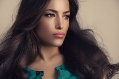 Woman beauty portrait. Beautiful woman with long stylish hair and smooth makeup, studio shot Stock Photography