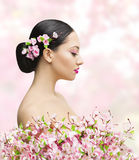 Woman Beauty Portrait in Sakura Flower, Asian Girl Bun Hairstyle. Beautiful Model Over Pink Background stock images