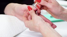 Woman in a Beauty Salon receiving a manicure stock video footage
