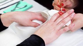 Woman in a Beauty Salon receiving a manicure stock footage