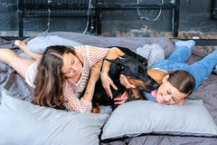 Woman in bed with big dog Stock Photography