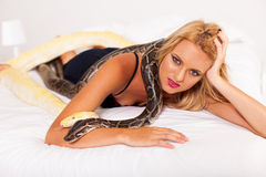 Woman bed pythons Royalty Free Stock Images